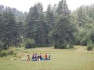 В горите край язовир Батак