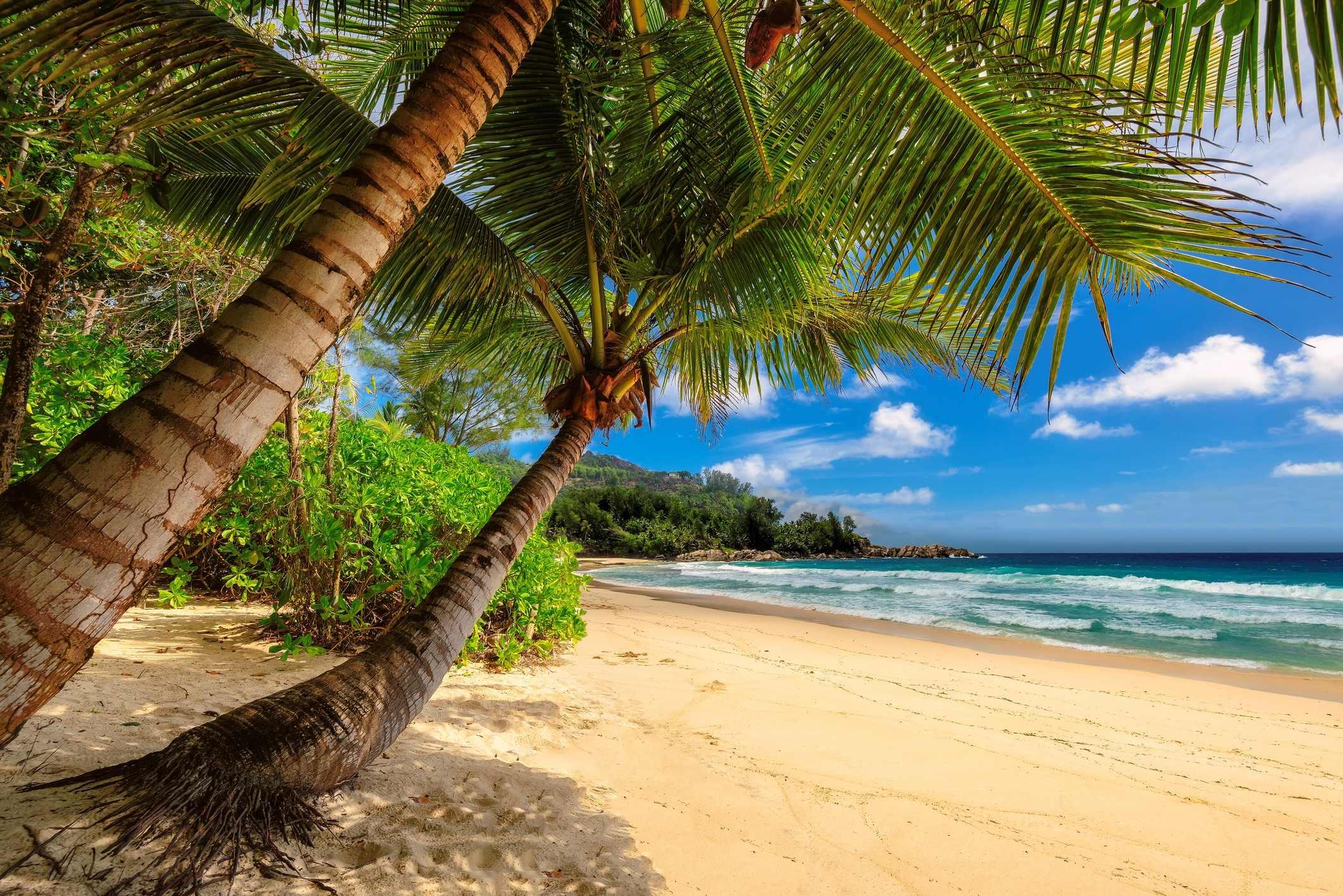 Кариби - плаж
